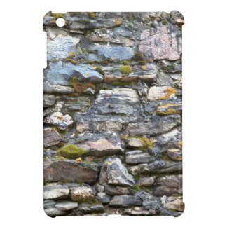 Colorful Rocky Mountain Nature Wall Case For The iPad Mini