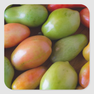 Colorful_Roma_Tomatoes Square Sticker