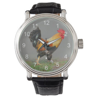 Colorful Rooster Painting Wrist Watches