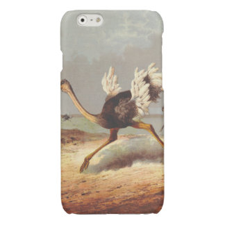 Colorful running ostrich illustration case