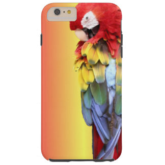 Colorful Scarlet Macaw Parrot iPhone Cover