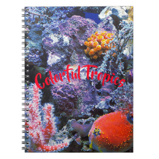Colorful Sea Coral Notebooks