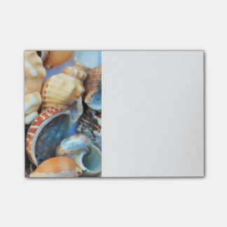 Colorful Sea Shells Post-it Notes