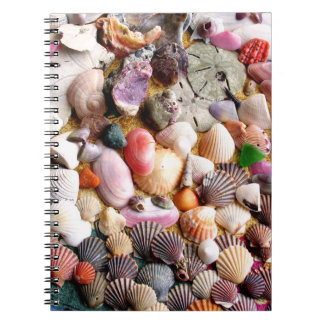 COLORFUL SEA SHELLS SPIRAL NOTEBOOKS