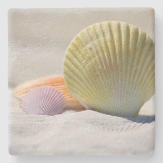 Colorful Seashells in the Sand Stone Coaster