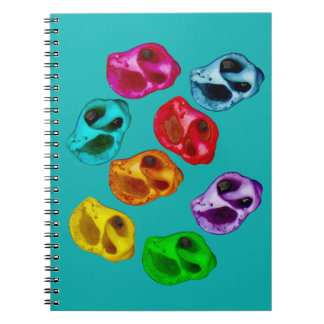 Colorful snails notebooks