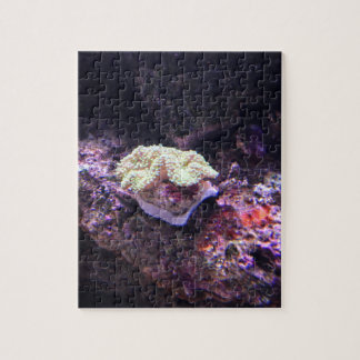 Colorful Soft Coral And Live Rocks Jigsaw Puzzle