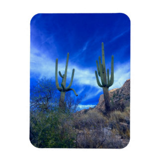 Colorful Southwest Desert Arizona Magnet