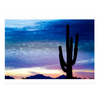 Colorful Southwest Desert Sunrise Postcard
