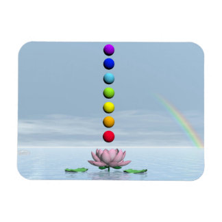 Colorful spheres for chakras upon beautiful lily f magnet