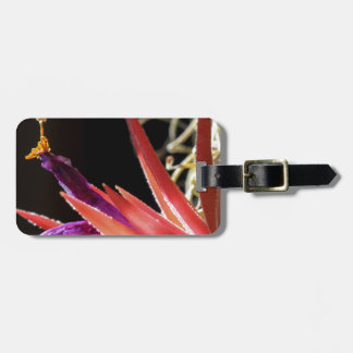 Colorful Spiked Plant Luggage Tag
