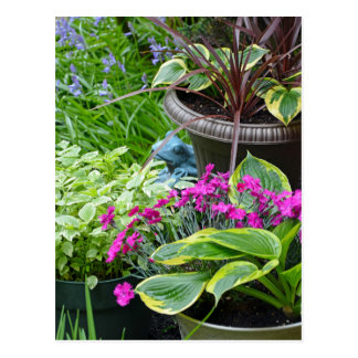 Colorful spring garden print postcard