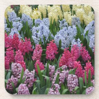 Colorful spring hyacinths drink coasters