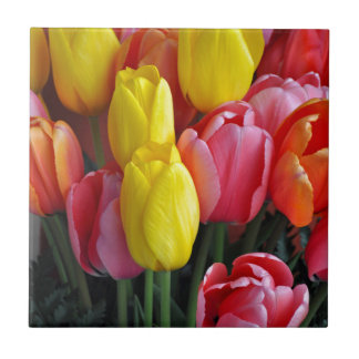 Colorful spring tulips bouquet tile