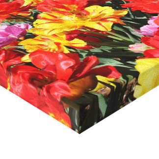 Colorful Spring Tulips Canvas Wall Art
