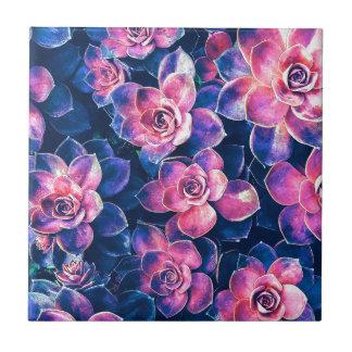 Colorful Succulent Plants Tile