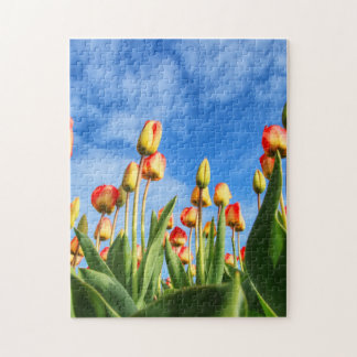 Colorful Summer Tulips Jigsaw Puzzle