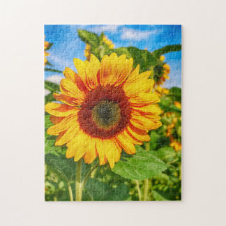 Colorful Sunflower Jigsaw Puzzle