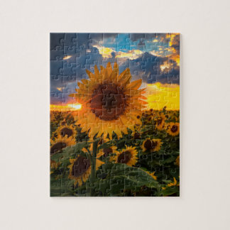 Colorful Sunflowers in a Field Jigsaw Puzzle