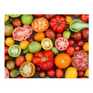 Colorful Tomatoes Postcard