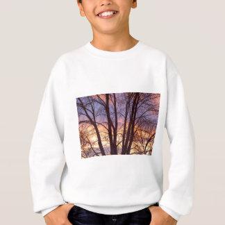 Colorful Tree Branches Night Sweatshirt