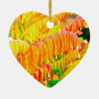 Colorful tree leaves in autumn season outdoors ceramic heart ornament