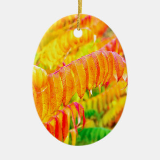 Colorful tree leaves in autumn season outdoors ceramic oval ornament