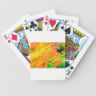 Colorful tree leaves in autumn season outdoors poker deck