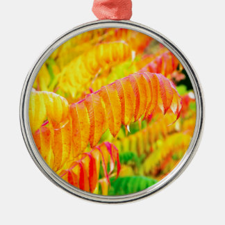 Colorful tree leaves in autumn season outdoors Silver-Colored round ornament