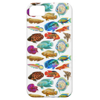 Colorful Tropical Aquarium Fish iPhone Case