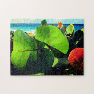 Colorful Tropical Relaxation Puzzle