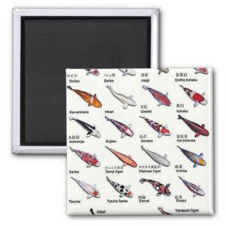 Colorful Varieties of Koi Fish Drawing Pattern Magnet