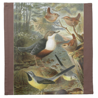 Colorful vintage illustration of birds napkin