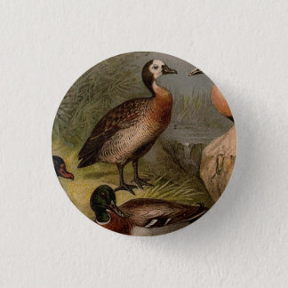 Colorful vintage painting of ducks 1 inch round button