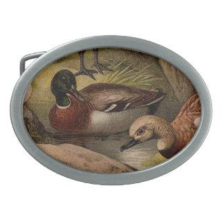 Colorful vintage painting of ducks belt buckle
