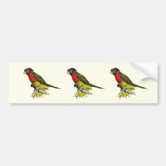 Colorful vintage parrot illustration bumper sticker