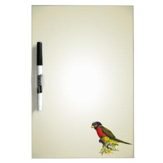 Colorful vintage parrot illustration Dry-Erase boards