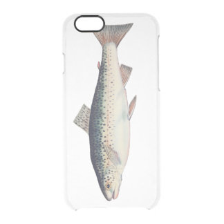 Colorful vintage salmon illustration clear iPhone 6/6S case