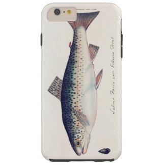 Colorful vintage salmon illustration tough iPhone 6 plus case