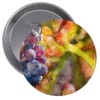 Colorful Wine Grapes on the Vine 4 Inch Round Button