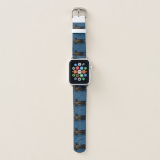 Colorful wood duck apple watch band