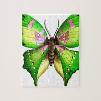 Colorfull Butterfly Puzzles