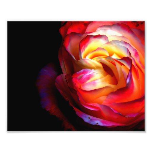 Colori Brillanti Photographic Print