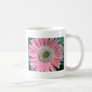 Colors of a Gerbera Daisy Classic White Coffee Mug