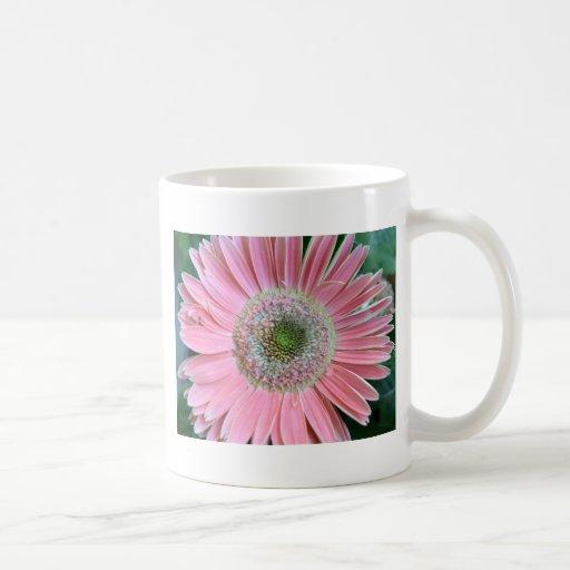Colors of a Gerbera Daisy Mug