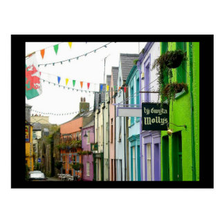 Colors of Caernarfon [Postcard] Postcard