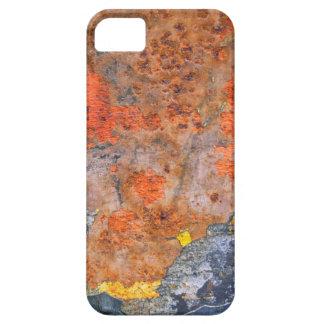 Colors of Rust 065, Rust-Art iPhone 5 Cases