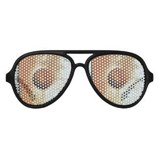 Colors of Rust Ob1.01.2, Rost-Art Aviator Sunglasses
