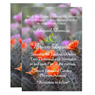 Colors of the desert cactus blooms background card