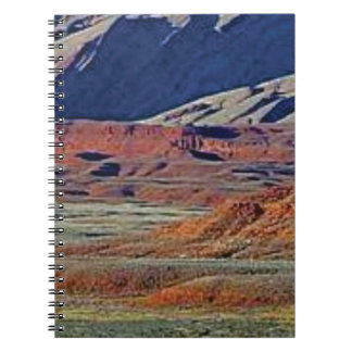 colors of the desert notebook